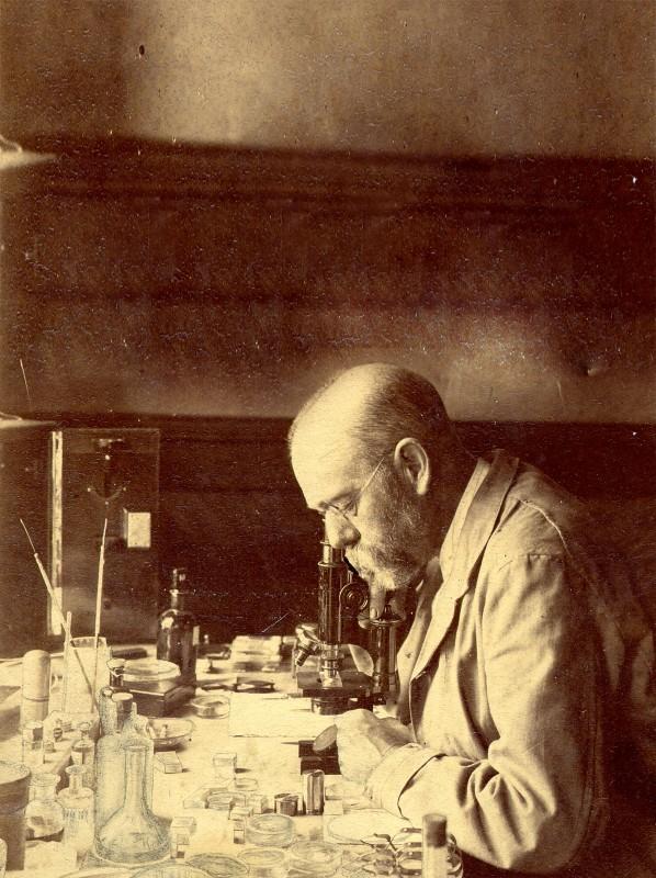 holographisches mikroskop jena
